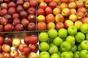 Æbler findes i store mængder om efteråret